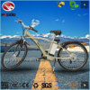 Hydraulic Suspension Alloy Frame Good Quality Cheap Electric Bike