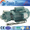 Px Series Centrifugal Pump in Domestic and Civil Applications