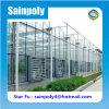 Glass Aluminum Greenhouse for Vegetable