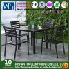 Dining Sets Aluminum Furniture Dining Sets (TG-HL808)