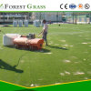 St Specialist in Artificial Turf Soccer Produce