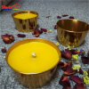 French Promotion Outdoor Candle for 3% Citronella