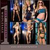 Club Dance Bra and Panty Lingerie Women Underwear (TQML5849)