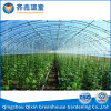 16*30 M Agricultural Greenhouse Plastic Film Greenhouse