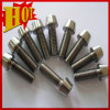 Titanium and Titanium Alloy Fasteners for Sale