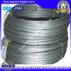 Electro Galvanized Iron Wire Manufacturer
