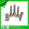 SUS 304 Socket Head Cap Self Tapping Screw