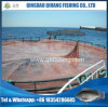 HDPE Floating Sea Cage Farms in Africa