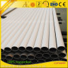 Anodized Aluminum Aluminium Extrusion Alloy Square/Round/Flat/Oval Tube