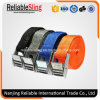 Multicolor Polyester Cargo Lashing Strap for Hold Light Loads