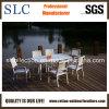 Fashionable Outdoor Furniture/Aluminium Design Outdoor Furniture (SC-B8877)