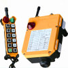 Radio Remote Control for Crane (F24-12D)