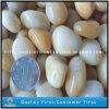 China Natural Black/Grey/Red/Grey Pebble/ Cobble Paving Stone