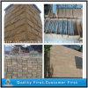 Chinese Yellow Sandstone for Wall Facade