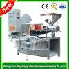 Cashew Nut Spiral Oil Press Machine