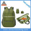 New Foldable Waterproof Travel Sports Outdoor Bag Backpack