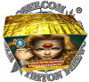 Princess Warrior 49 Shots Fan Cake Fireworks/High Quality with The Best Price