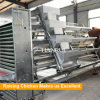 Automatic A type egg Chicken Layer Battery Cage