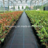 Vegetables Winter Protection Frost Protection Cover Weed Control Mat