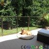 Wood Plastic Composite WPC Outdoor Decks (TW-02)