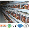 Design Layer Chicken Cages for Poultry Farms