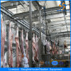 Halal Cattle Slaughter Equipment with 50 Heads/Day