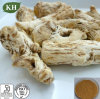 Pharmaceutical Grade Angelica Root Extract Ligustilide and Ferulic Acid