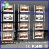 Landscape Crystal Acrylic Hanging LED Light Box for Real Estate Agency Window Display