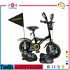 Beautiful 12 14 16 Inch Bicycle for 2-7years Old Children Bicycle/BMX/Kid Bike/Baby Bike