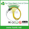 FC APC Ribbon Fiber Optic Pigtail