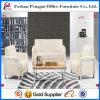 Modern White Office Sofa for Sale