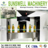 Rcgf 24-24-8 8000bph Beverage Fresh Fruit Juice Filling Machine