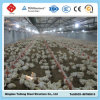 High Qualified Prefab Steel Structure Poultry House for Sale