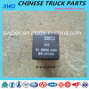 Relay for Shacman Truck Spare Parts (81.25902.0460)