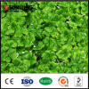 Outdoor Garden Decoration Stera Artificial Boxwood Hedge