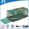Green Colour Crab Trap/Fish Trap