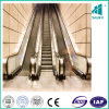 Escalator Indoor Outdoor with Vvvf