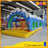 Large Adult Ocean Inflatable Obstacle Water Slide (AQ14239)