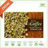Pure Green Coffee Bean Extract 50% Chlorogenic Acid