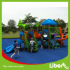 2014 New Style Popular Wisdom Series Outdoor Playground Equipment (LE. ZI. 012)