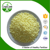 NPK Water Soluble Fertilizer (15-30-15+TE) Manufacturer