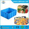 Fruit and Vegetable PP Turnover Case