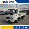 Light Duty Petrol Cargo Truck