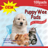 Disposable 23*24 Dog Training Mat (6060-3)