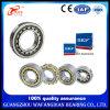 High Quality Rodamiento Mcgill NTN NSK Koyo NACHI Bearing Cylindrical Roller Bearing Nu203 Nu206 Nu213 Nu215 Nu219