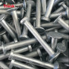 Hot DIP Galvanized Forged Carbon Steel Lifting Anchor