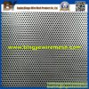 Stainless Steel Perforated Metal Mesh for Wind/Dust Fence