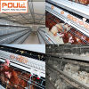 Hot/Cold Galvanized Vertical Layer Poultry Battery Cage System