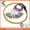 FC/SC/ST 12 Core Ribbon Packing Fiber Optic Pigtail