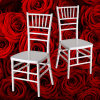 White Resin Chiavari Wedding Chair White Tiffany Chair
